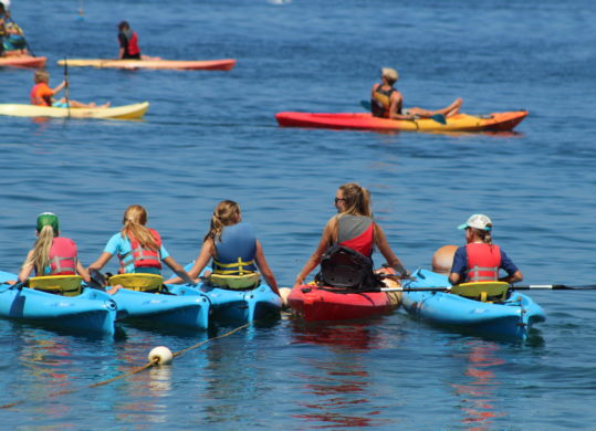 summer campers and guide kayaking off the coast of Catalina Island