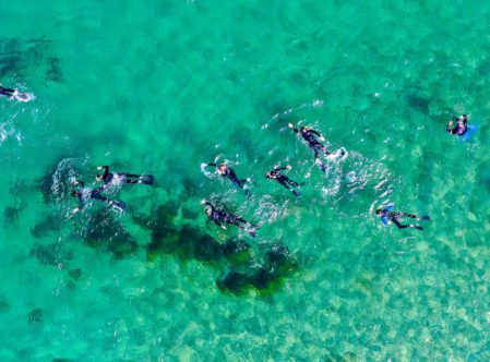 top down aerial view of campers skindiving in clear blue water